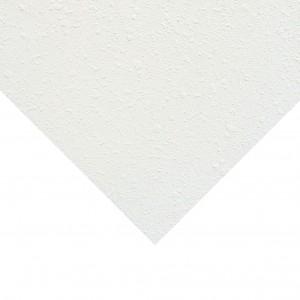 Фотография подвесной плиты Armstrong Newtone
